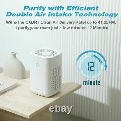 3-Stage HEPA Air Purifiers for Large Home Clean Allergies Pets Hair Smoker Odors