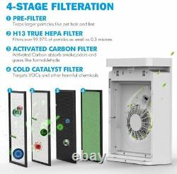 Air Purifier H13 HEPA Filter for Home Large Room Powerful 900SqFt for Smoke Dust