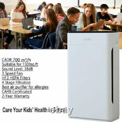Large Room Air Purifier H13 HEPA Home Air Cleaner for Allergies Smoke Eliminator