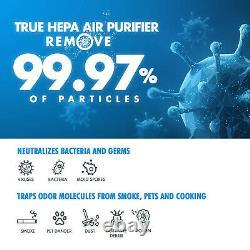 Large Room H13 True HEPA Air Purifier for Virus Allergies Dust Mold Smoke Eater