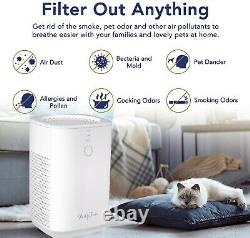 RedyPure Best For Home Air Purifier True HEPA Filter Air Cleaner 3-Stage Filter
