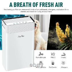 900sq. Purificateur D'air Ft, Grande Chambre Avec Un Filtre Hepa Tranquille Cold Catalyst