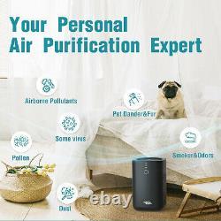 Grand Nettoyant D'air De Pièce Filtre Hepa Enlever Les Allergies À La Maison De Moule De Poussière D'odeur