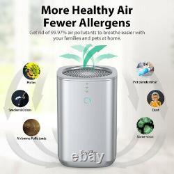Grand Purificateur D'air De Pièce Avec Le Filtre Vrai D'hepa Enlèvent Des Allergies Odeurs Sans Bruit