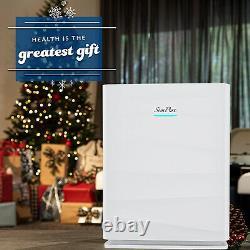 Grande Salle H13 Vrai Purificateur D'air Hepa Pour Virus Allergies Dust Mold Smoke Eater