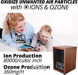 Hepa Mammouth Purificateur D'air Et Générateur D'ozone Pour Utilisation À Domicile, Sortie 3.000 Mg