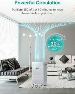 Purificateur D'air 2xh13 Hepa Filter900sqft Pour Home School Office Californie Approuvé