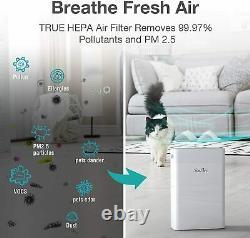 Purificateur D'air H13 Hepa Filtre Pour La Maison Grande Chambre Puissant 900sqft Pour La Poussière De Fumée