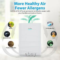 Purificateur D'air Hepa Pour Grande Pièce, Mangeur De Fumée, Tueur D'odeurs, Améliorer La Qualité De L'air