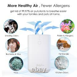 Purificateur D'air Pour Cheveux D'animal Familier De Grandes Allergies De Pièce, Fumeur, Moule, Filtre Double Hepa