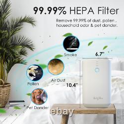 Purificateurs D'air Hepa 3 Étages Pour Les Grandes Allergies Propres À La Maison Animaux De Compagnie Fumeurs De Cheveux Odors