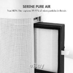 Tenergy 1000ml Quiet Déshumidificateur Avec Air Purifiant Fonction Filtre Hepa