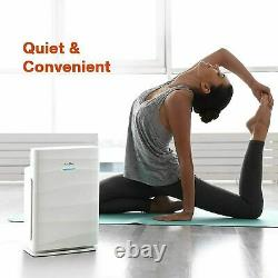 True Hepa Air Purificateurs Home Large Room Air Cleaner For Allergies Smoker Mold États-unis